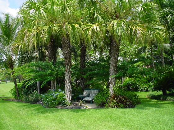Florida Landscape Design Ideas Gardening In South Florida A Few Of