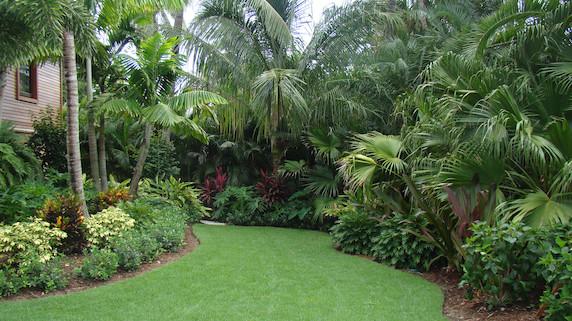 Landscaping Pine Island
